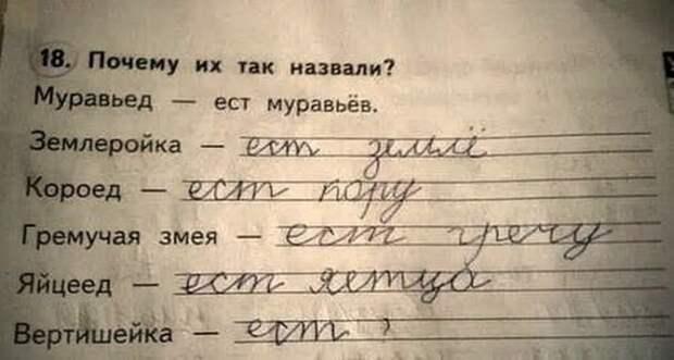 Смешные и гениальные ответы детей в своих школьных тетрадях!