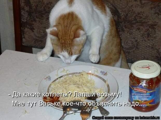 Новогодняя котоматрица (50 фото)