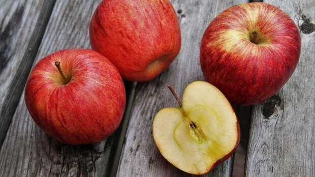 Дачникам объяснили, чем баловать плодовые деревья для полных ведер урожая