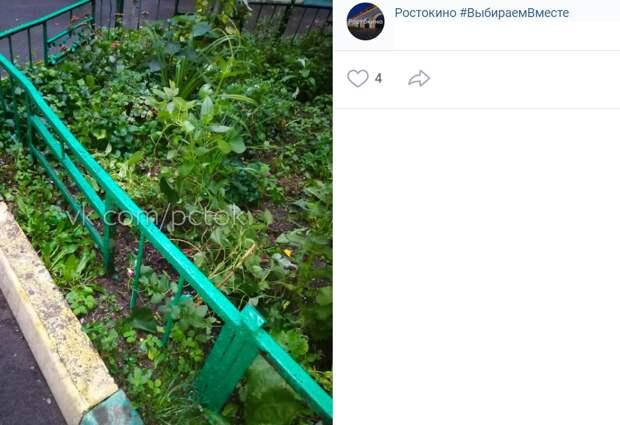 Жителей дома на Малахитовой забыли предупредить об окрашенном заборе