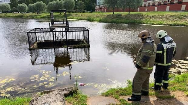 Петербуржцы пытаются спасти выводок утят из водосброса на реке Новой