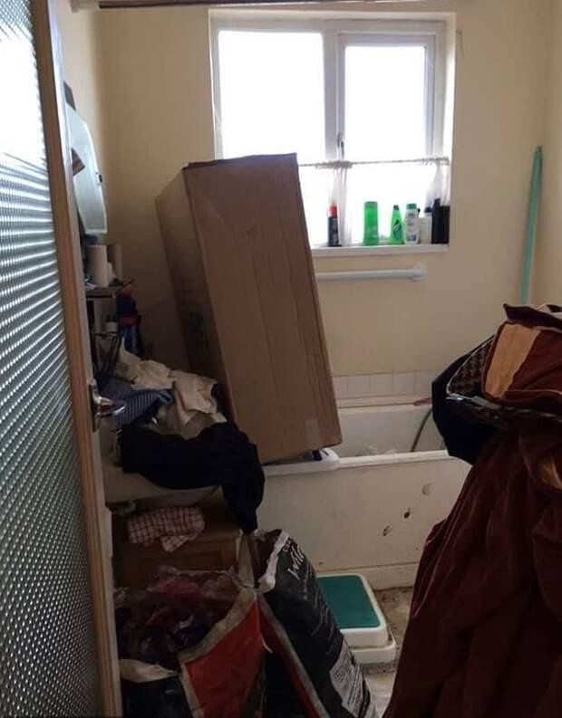 Семья купила дом до потолка заваленный мусором, но два года ремонта преобразили его до неузнаваемости