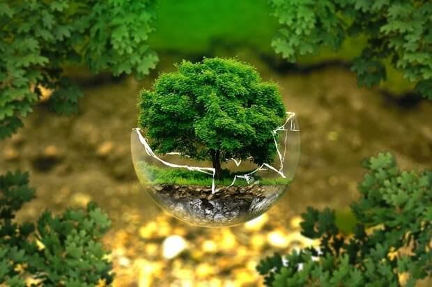 На Кубани создали экосистему для исследования декарбонизации