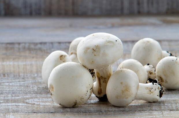 Главные правила запекания грибов