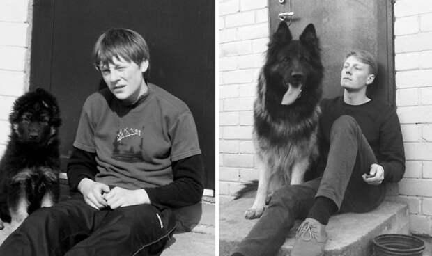 Рекс и Виталиус: 7 лет рядом до и после, друзья, собаки, фото