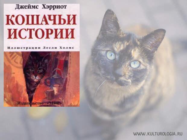 Кошачьи истории. Джеймс Хэрриот.