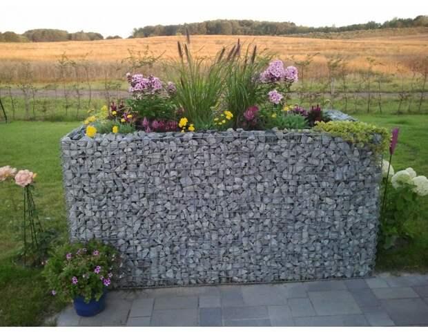 Идеи габионов - необычных цветникков из сетки и камня
