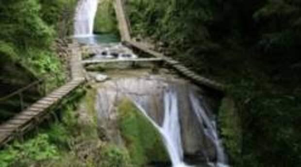 Национальный парк в Сочи возобновил экскурсии для туристов