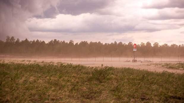 Знойное дыхание пустыни: пылевой шлейф и вирусы грозят россиянам