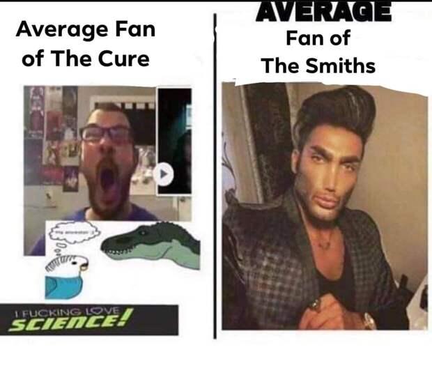 average fan average enjoyer мемы