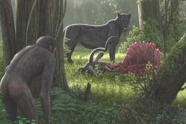 Ученые подозревают древних гоминидов в массовых исчезновениях живых существ