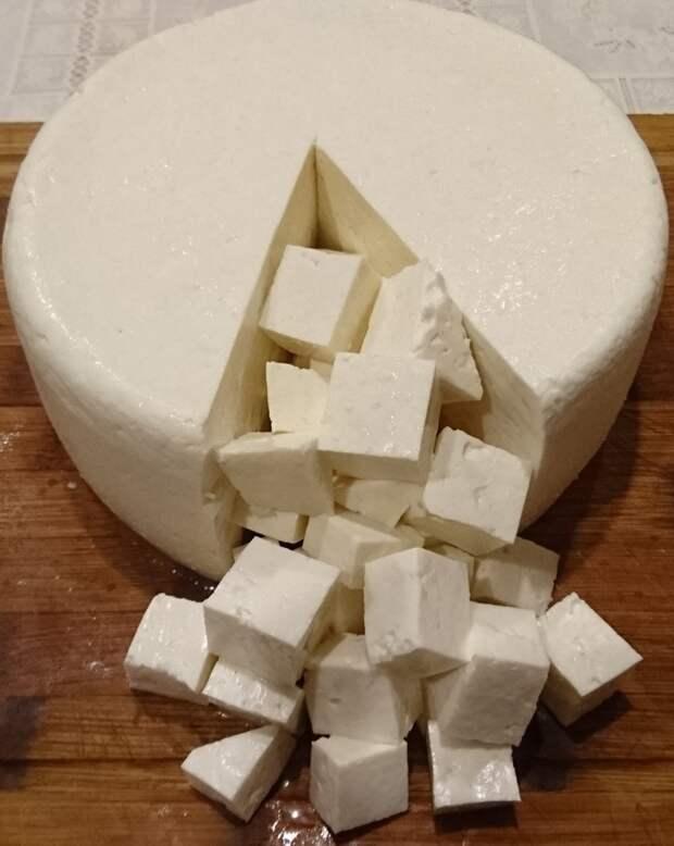 Моцарелла, первый блин домашний сыр, еда, моцарелла, своими руками, сыр