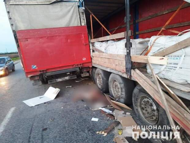 В ДТП в Запорожской области погиб мужчина