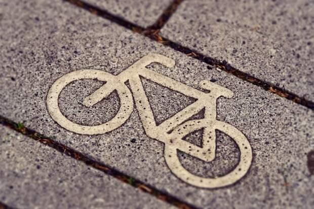 До конца года в Дмитровском планируют построить велодром