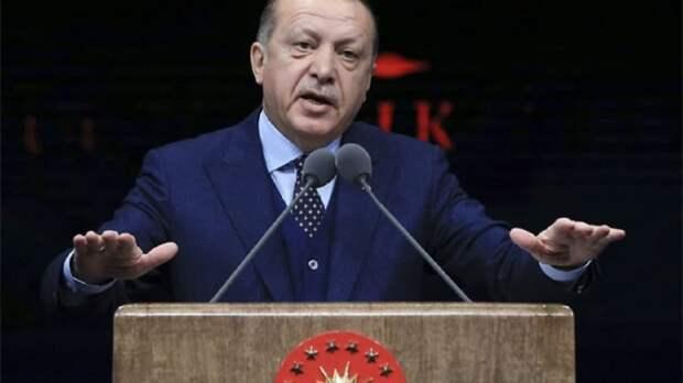 Эрдоган намерен работать над признанием Косово в мире