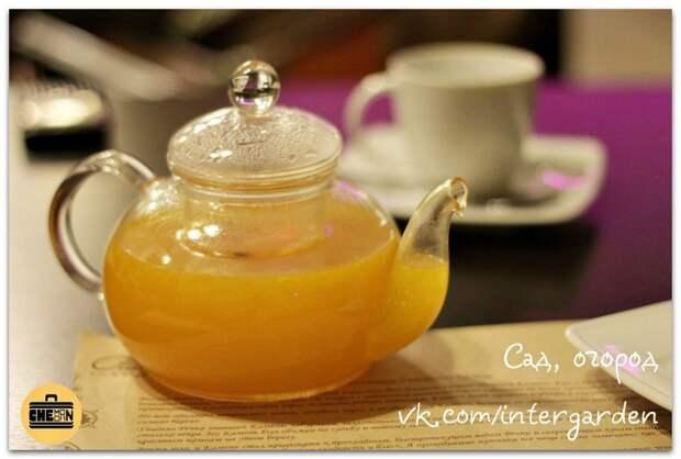14 лучших полезных добавок к чаю