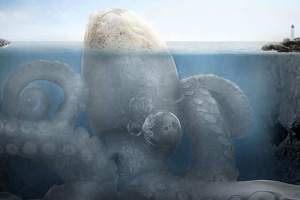 Океанолог рассказал, где обитают кракены