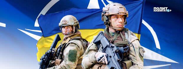 «Нас захватит Россия». Украина слезно умоляет НАТО о спасении