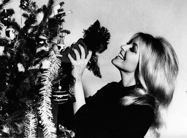Шарон Тэйт встречает новый 1965 год с псом Гиннессом.