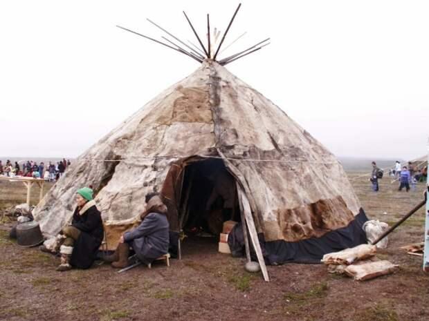 Яранга — традиционное жилище коряков./Фото: etnic.ru