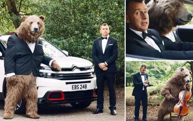 Реклама Citroen с медведем возмутила зоозащитников