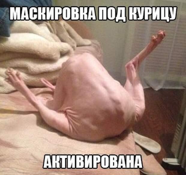 1466535033_97