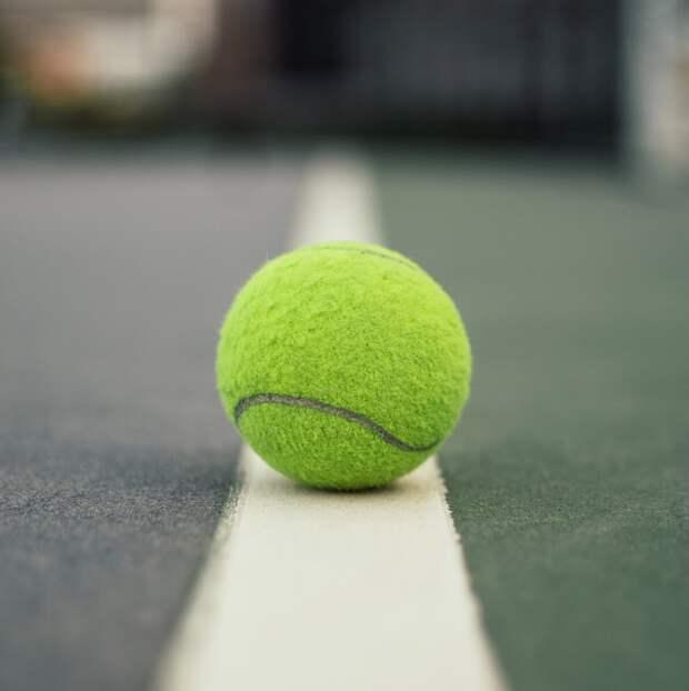 Какой вид спорта самый полезный (с научной точки зрения)