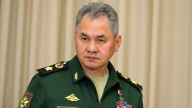 Работы Шойгу ушли с молотка за 40 миллионов рублей