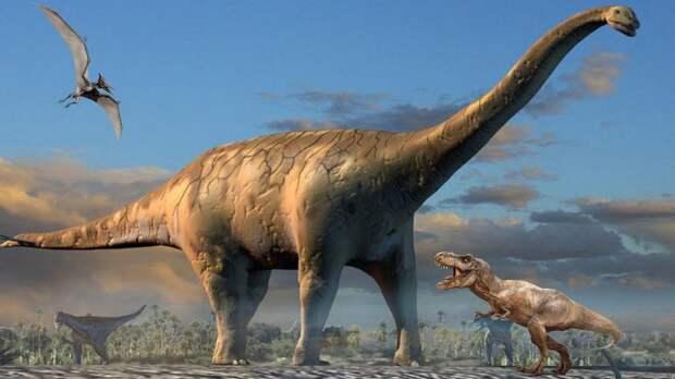Как скелет динозавров выдерживал их вес?