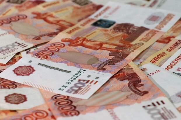 Директор рязанской организации задолжал по налогам свыше 100 млн рублей