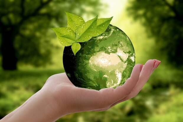 Фестиваль «Ноль отходов» пройдет в экоцентре на Ленинградке