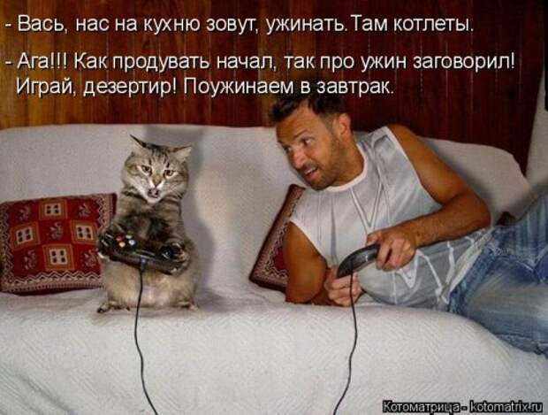 4208855_1556890748_kotomatricy11 (500x379, 49Kb)