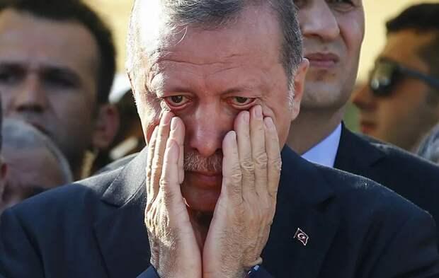 Россиян призвали ответить на оскорбление Эрдогана и бойкотировать отдых в Турции