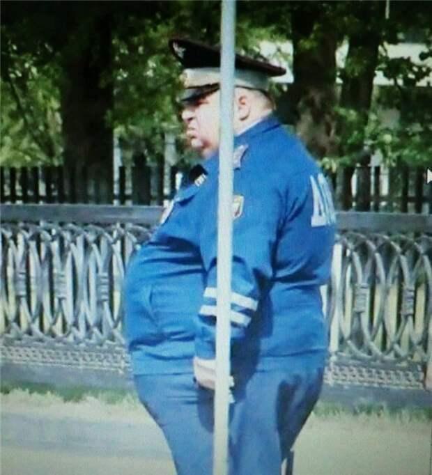 ДПСники на страже порядка гаи, дпс, ловушки дпс, прикол, прячутся дпсники, смешно, штраф
