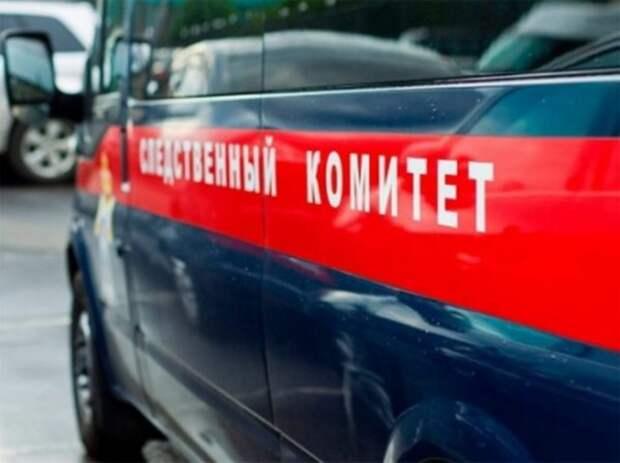 Следователи выясняют обстоятельства гибели 13-летней девочки в Рязани