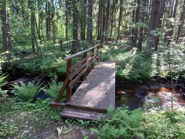 Поселок Ушково. Красивый ручей, заброшенный старинный дом и замечательный пляж на Финском заливе