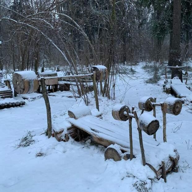 «Деревянный спортзал» в лесу за бульваром Академика Ландау не сгорел