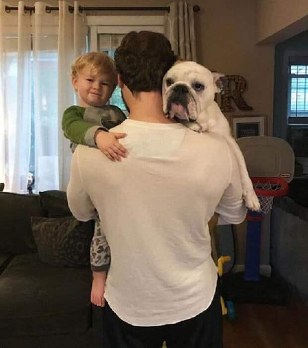 Мужчина собака и мальчик