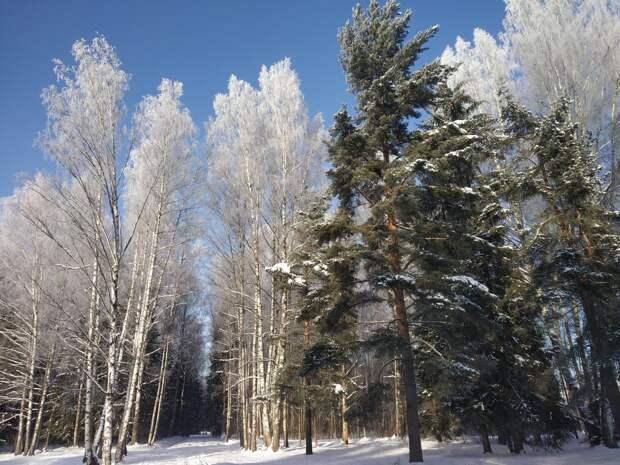 Красоты России (#627)