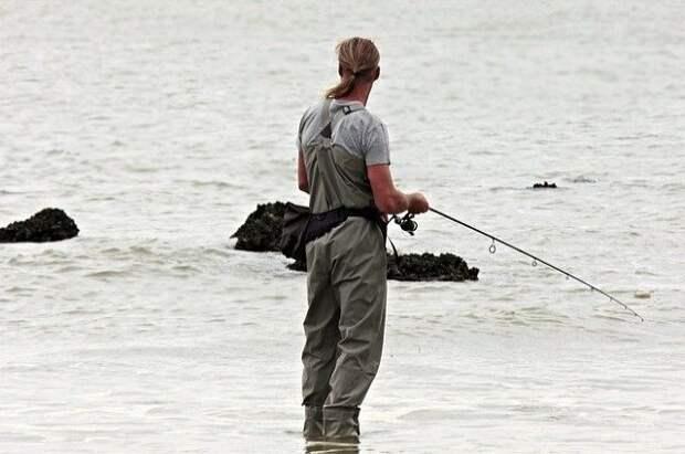 Опасные для здоровья виды рыб