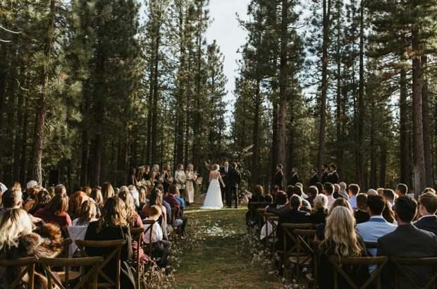 Свадьба в лесу — идеи оформления, особенности и фото