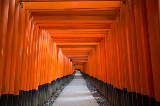 Святилище Фусими Инари, Япония красота, путешествия, фото