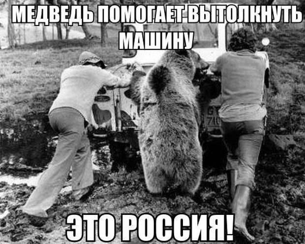 1449147808_avtoprikoly-11