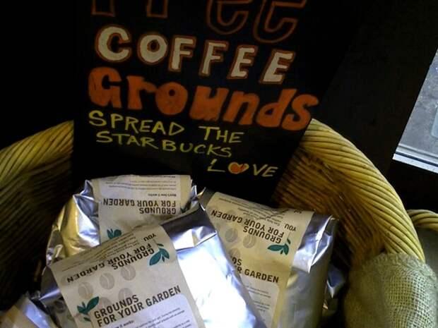 кофе как удобрение, спитой кофе как удобрение