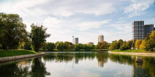 Два парка в Левобережном попали в топ мест для встречи закатов
