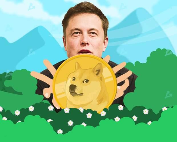 Монеты на PoS укрепили позиции после отказа Tesla принимать биткоин