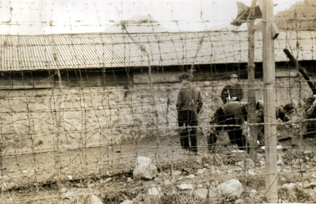 n_korean_prisoners_koje-do.jpg