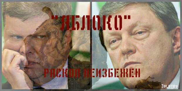 «Яблоко» раздора: забьет ли Сергей Митрохин последний гвоздь в крышку гроба детища Явлинского