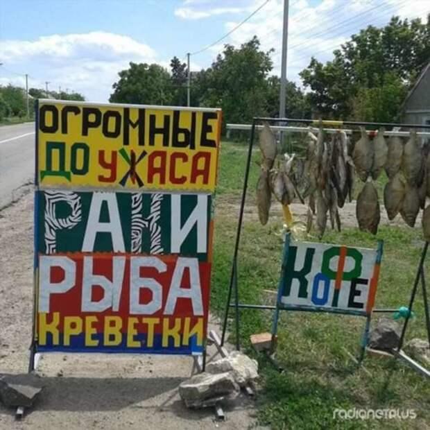 Прикольные вывески. Подборка chert-poberi-vv-chert-poberi-vv-56501211092020-8 картинка chert-poberi-vv-56501211092020-8