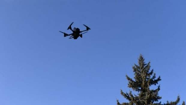 Украина планирует наладить производство дронов-камикадзе для ВСУ
